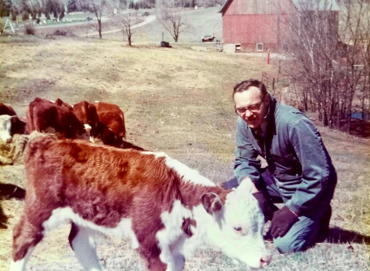 Grandpa Leppink and herefords